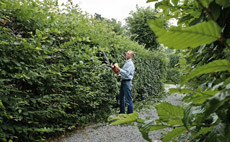 Cordless-Li-Ion-hedge-trimmers