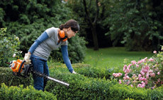 Petrol-hedge-trimmers